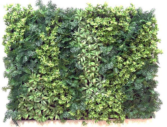 Green wall design vertical garden living wall design for Vertical green wall